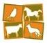 logotipo de CEMAVE SANIDAD ANIMAL SL